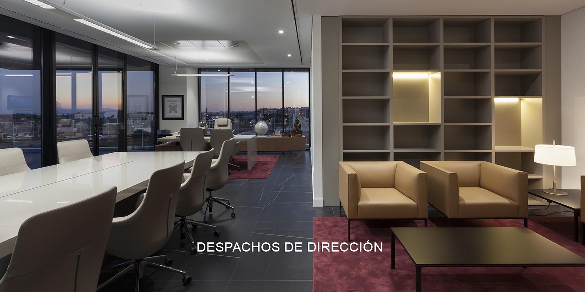 DESPACHOS DE DIRECCIÓN